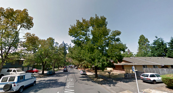 Two helicopters showed up in the same area once the object disappeared. Pictured: Eugene, OR. (Credit: Google)