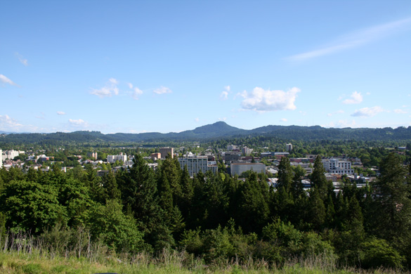 Downtown Eugene as seen from Skinner Butte. (Credit: Wikimedia Commons)