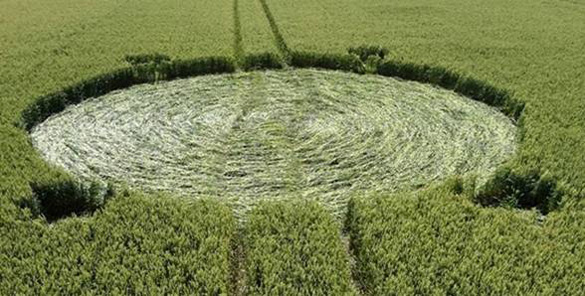 """Largest circle (15 meter or 140 ft. +/- diameter)  with four """"satellites"""" attached. Photo: Roy Boschman"""