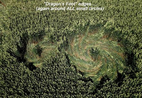 """Again, in this 3rd July 21st formation, all of the smaller circles had """"Dragon's Foot"""" edges. Photo: Roy Boschman"""
