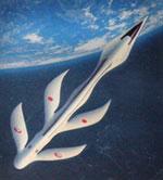 Japan Airlines concept