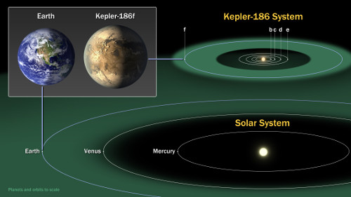 Comparison of the planets of our inner solar system to those in Kepler-186. (Credit: NASA Ames/SETI Institute/JPL-Caltech)